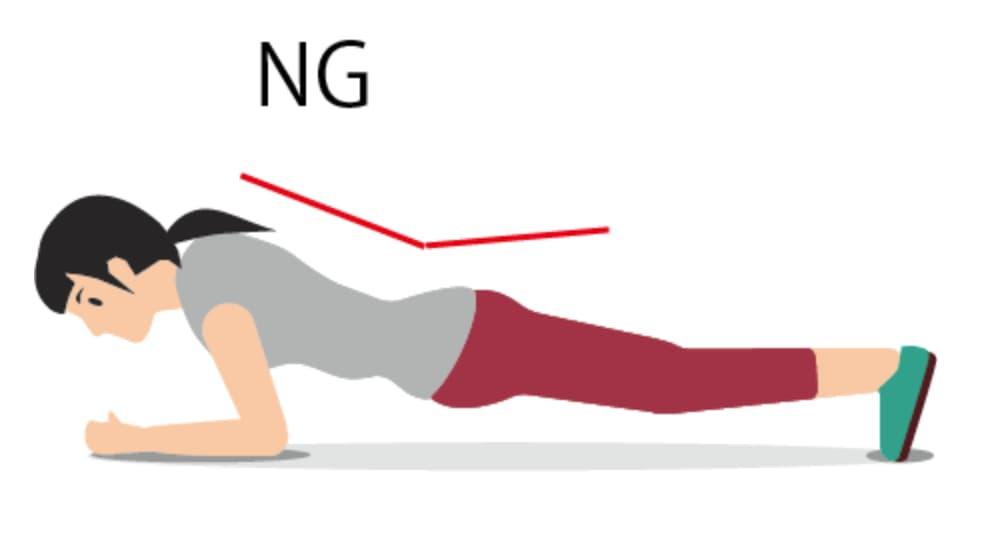 plank NG