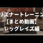 プリズナートレーニング レッグレイズ動画まとめ